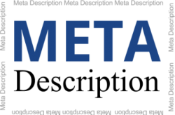 The Ins and Outs of Meta Descriptions